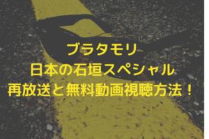 buratamori-ishigaki